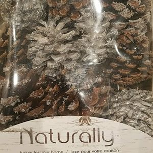 Home Goods Other - NEW Naturally Home Decor Pinecones for Centerpiece & 64% off Home Goods Other New Naturally Home Decor Pinecones For ...